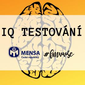 IQ testování na FMV VŠE